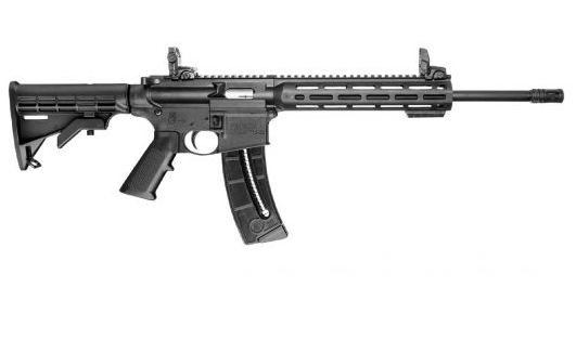 Smith and Wesson M&P 15-22 Sport Rifle (.22LR Rifle)